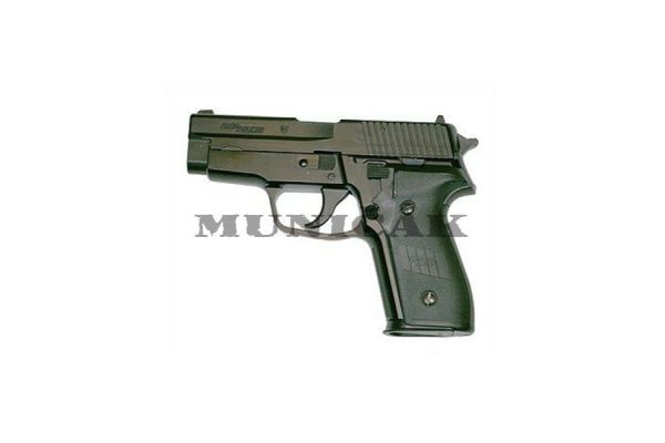 TM P228, hop up